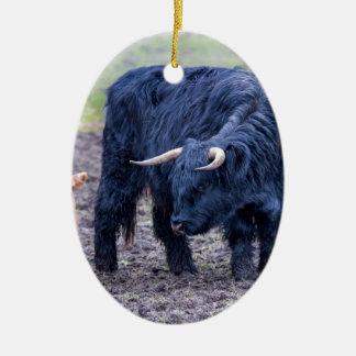 Black mother scottish highlander cow ceramic oval decoration