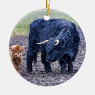 Black mother scottish highlander cow round ceramic decoration