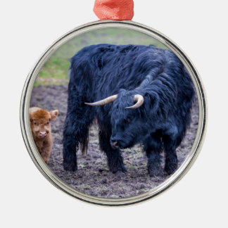 Black mother scottish highlander cow Silver-Colored round decoration