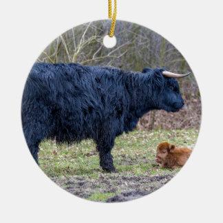 Black mother scottish highlander cow with calf round ceramic decoration