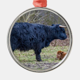Black mother scottish highlander cow with calf Silver-Colored round decoration