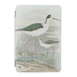 Black-Necked Stilts by the Water iPad Mini Cover