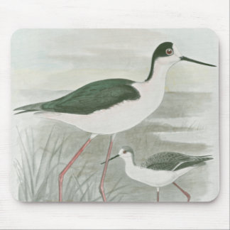 Black-Necked Stilts by the Water Mouse Mat