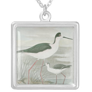 Black-Necked Stilts by the Water Silver Plated Necklace