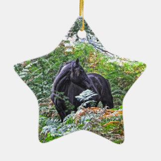 Black New Forest Pony & Forest U.K. Ceramic Star Decoration