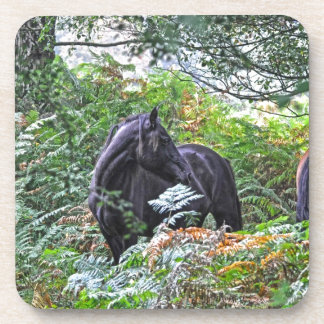 Black New Forest Pony & Forest U.K. Drink Coasters
