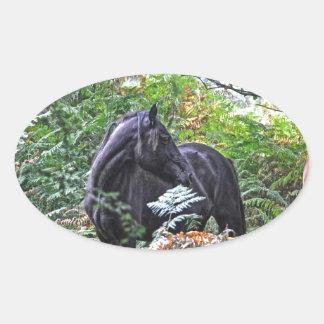 Black New Forest Pony & Forest U.K. Oval Sticker