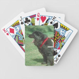 Black Newfoundland Dog Playing Cards