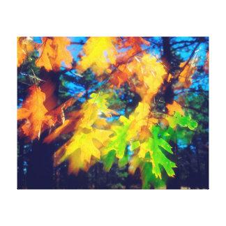 Black Oak Leaves blowing in the Wind Gallery Wrap Canvas