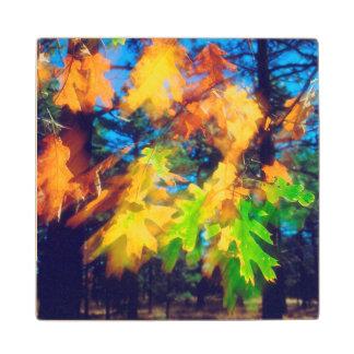 Black Oak Leaves blowing in the Wind Wood Coaster