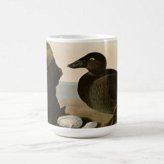Black or Surf Duck Mugs