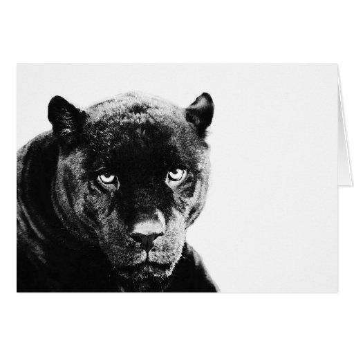 Black Panther Jaguar Greeting Card