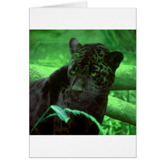Black Panther Jaquar on Green Card