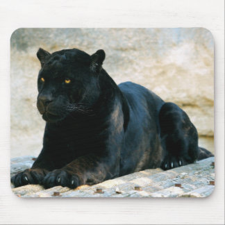 Black panther mouse mat