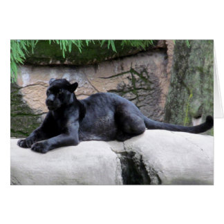 Black Panther Note Card