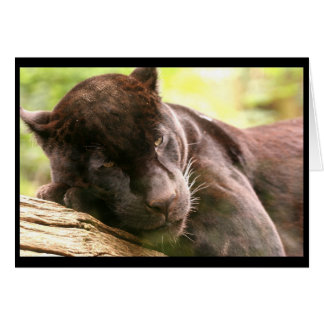 Black Panther Sleeping Greeting Card