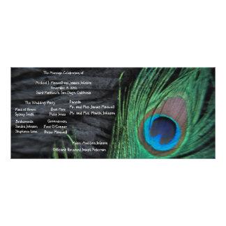 Black Peacock Velvet Background Wedding Program Rack Card