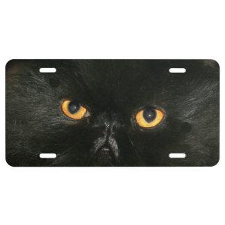 Black persian cat eyes license plate
