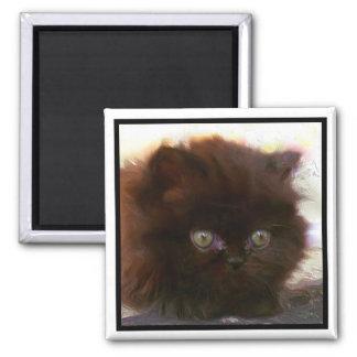 Black Persian Kitten magnet