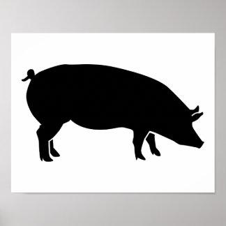 Black pig poster