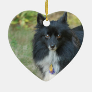 Black Pomeranian Dog Ornament
