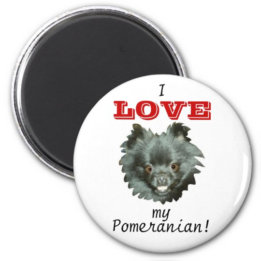 Black Pomeranian-I LOVE my Pomeranian! 6 Cm Round Magnet