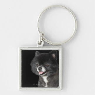 Black Pomeranian looking to the left Silver-Colored Square Key Ring