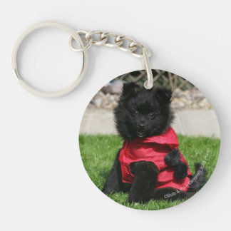 Black Pomeranian Puppy Looking at Camera Double-Sided Round Acrylic Key Ring