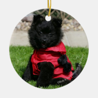 Black Pomeranian Puppy Looking at Camera Round Ceramic Decoration