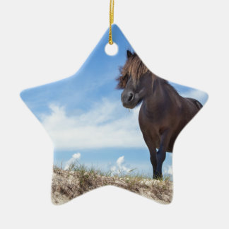 Black pony on sand with blue sky christmas ornament