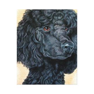 Black Poodle Gallery Wrap Canvas