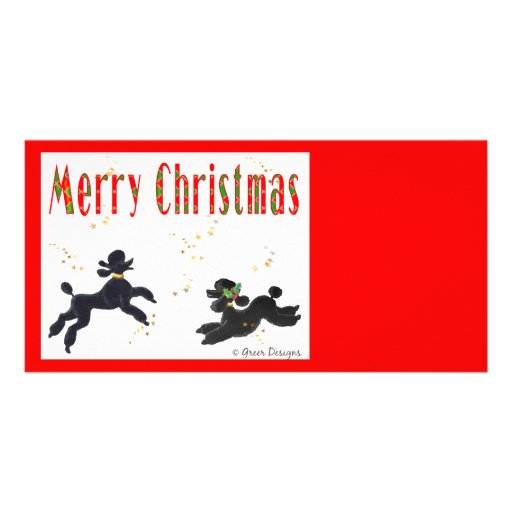 Black Poodles Playing Merry Christmas Photo Card
