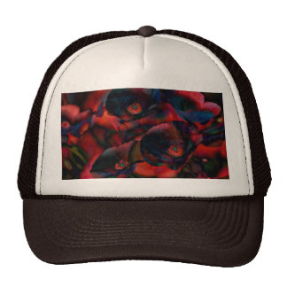 Black Poppies Cap