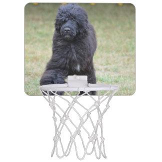 Black Portuguese Water Dog Mini Basketball Hoop