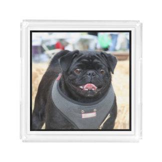 Black pug dog acrylic serving tray