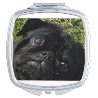 black-pug eyes.png compact mirrors