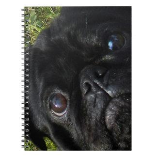black-pug eyes.png notebooks