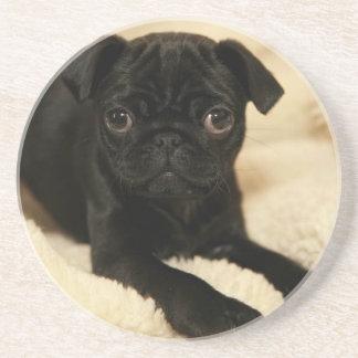 Black Pug Puppy Coaster