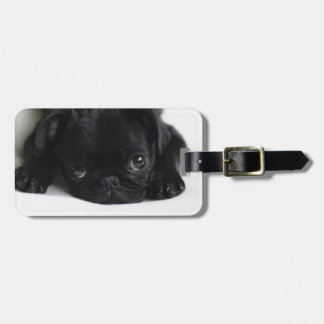 Black Pug Puppy Luggage Tag