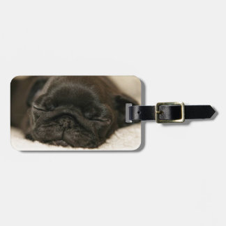 Black Pug Puppy Sleeping Luggage Tag