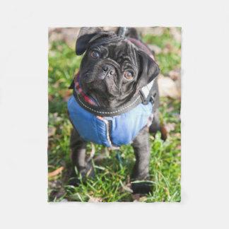 Black Pug Puppy Wearing A Jacket Fleece Blanket