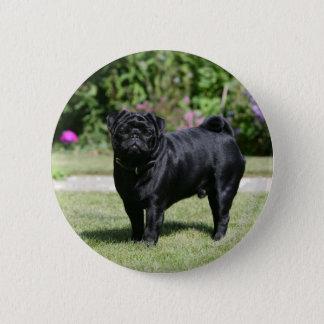 Black Pug Standing Looking at Camera 6 Cm Round Badge