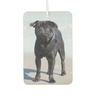 Black Pug Standing On The Beach Car Air Freshener