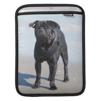 Black Pug Standing On The Beach Sleeves For iPads