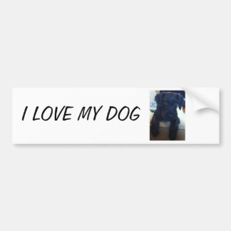 Black Puppy Bumper Sticker