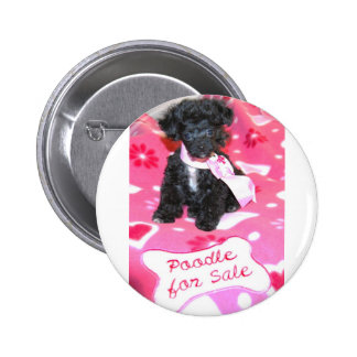 Black Puppy Poodle for Sale 6 Cm Round Badge