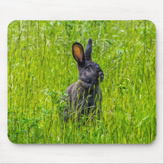 Black rabbit in the grass mousepad