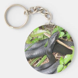 Black Racer Snake Sunning Basic Round Button Key Ring