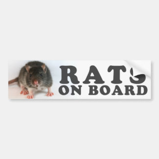 (Black) Rats one board Bumper Sticker