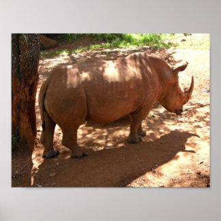 Black Rhino African Home Decor Poster